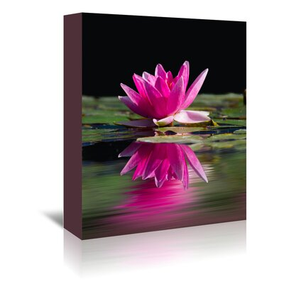 Americanflat Wonderful Dream Asia Lotus 2 Photographic Print Wrapped on Canvas