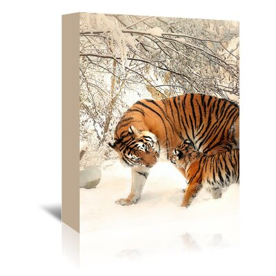 Americanflat Wonderful Dream Tiger Family in the Snow Photographic Print Wrapped on Canvas