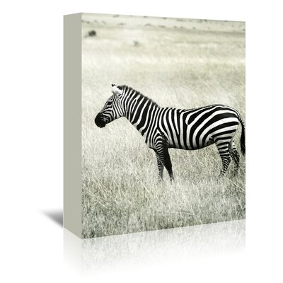 Americanflat Wonderful Dream Vintage Zebra Africa Photographic Print Wrapped on Canvas