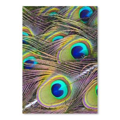 Americanflat Wonderful Dream Peacock Bird Pattern Feather Photographic Print