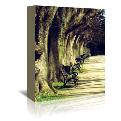 Americanflat Wonderful Dream Tree Avenue Landscape Photographic Print Wrapped on Canvas