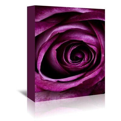Americanflat Wonderful Dream Rose of Love Valentine Photographic Print Wrapped on Canvas