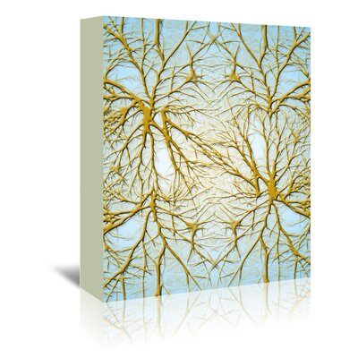 Americanflat Wonderful Dream Neurons Medical Cell System Graphic Art Wrapped on Canvas
