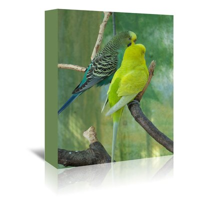 Americanflat Wonderful Dream Budgie in the Nature Photographic Print Wrapped on Canvas