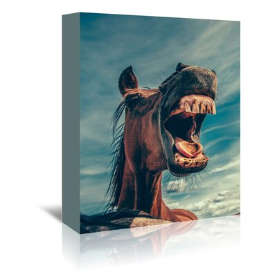Americanflat Wonderful Dream Funny Lucky Horse Photographic Print Wrapped on Canvas