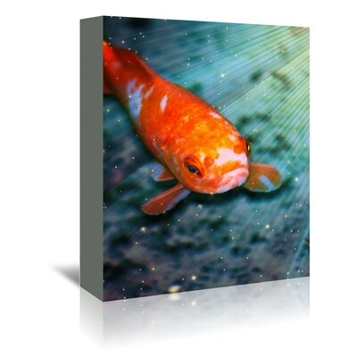 Americanflat Wonderful Dream Fish Sea Life with Stars Graphic Art Wrapped on Canvas