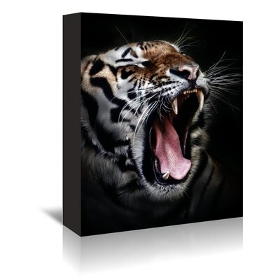 Americanflat Wonderful Dream Dangerous Tiger Wildcat Photographic Print Wrapped on Canvas