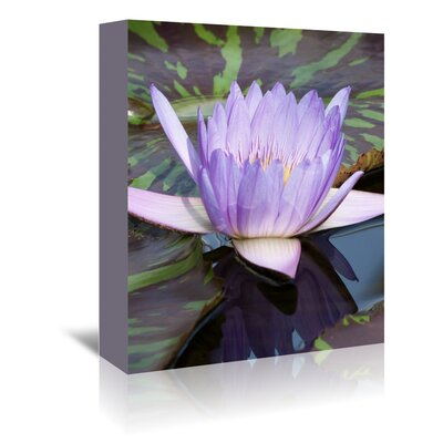 Americanflat Wonderful Dream Asia Lotus Flower Photographic Print Wrapped on Canvas