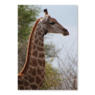 Americanflat Wonderful Dream African Giraffe Savannah Photographic Print