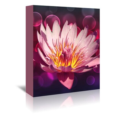 Americanflat Wonderful Dream Asia Lotus Flower with Bokeh Photographic Print Wrapped on Canvas