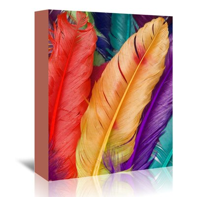 Americanflat Wonderful Dream Colourful Bird Feather Graphic Art Wrapped on Canvas