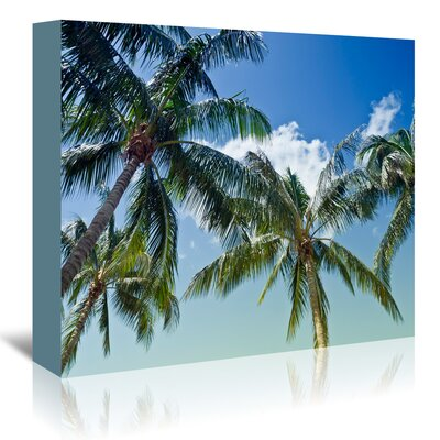Americanflat 'Palm Trees' by Melanie Viola Photographic Print Wrapped on Canvas