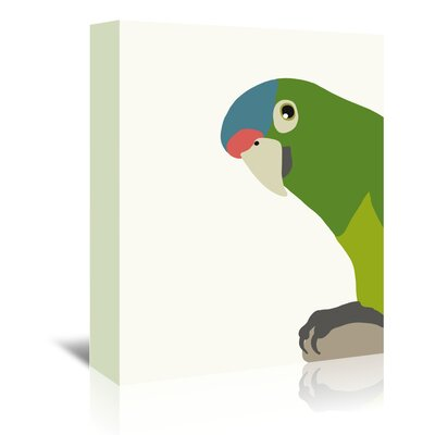 Americanflat 'Parrot' by Jorey Hurley Art Print Wrapped on Canvas
