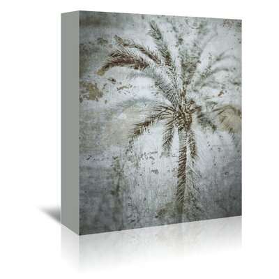Americanflat 'Palm on Concrete' by Golie Miamee Graphic Art Wrapped on Canvas