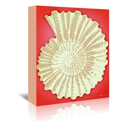 Americanflat 'Ammonite Shell White on Coral' by Graffi Tee Studios Graphic Art Wrapped on Canvas