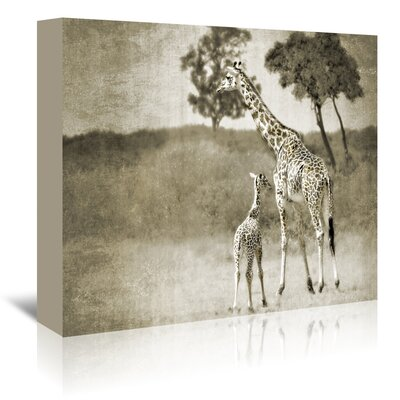 Americanflat 'Baby and Mother' by Golie Miamee Photographic Print Wrapped on Canvas