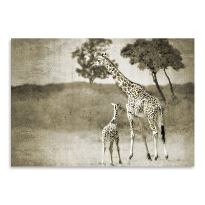 Americanflat 'Baby and Mother' by Golie Miamee Photographic Print