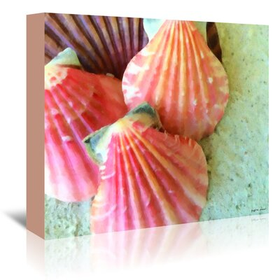 Americanflat Coral Scallops Painted' by Graffi Tee Studios Photographic Print Wrapped on Canvas