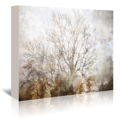 Americanflat Winter in Champagne' by Golie Miamee Graphic Art Wrapped on Canvas