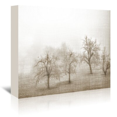 Americanflat 'Haze in Champagne I' by Golie Miamee Photographic Print Wrapped on Canvas