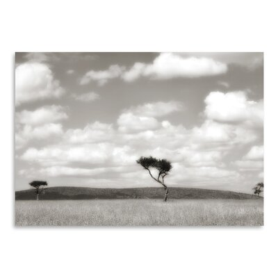 Americanflat 'Safari Drive' by Golie Miamee Photographic Print