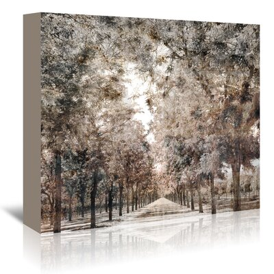 Americanflat 'The Road to Napa' by Golie Miamee Photographic Print Wrapped on Canvas