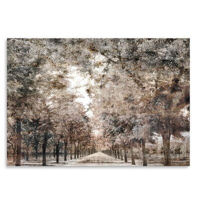 Americanflat 'The Road to Napa' by Golie Miamee Photographic Print