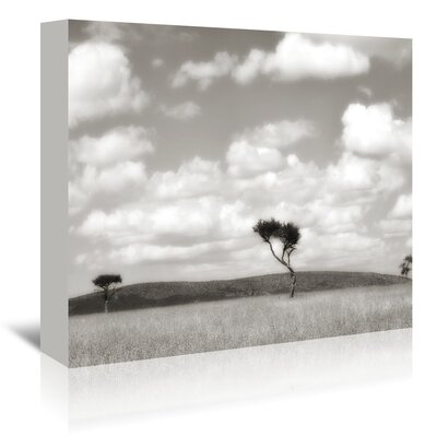 Americanflat 'Safari Drive' by Golie Miamee Photographic Print Wrapped on Canvas