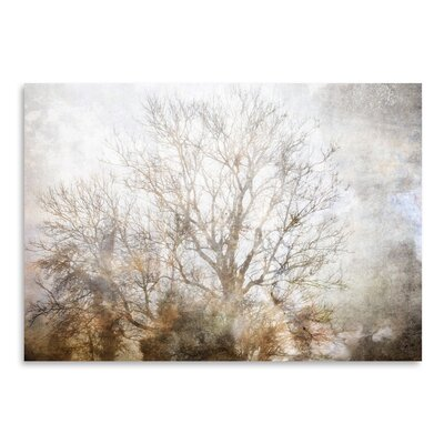 Americanflat 'Winter in Champagne' by Golie Miamee Photographic Print