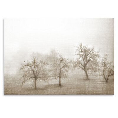 Americanflat 'Haze in Champagne I' by Golie Miamee Photographic Print