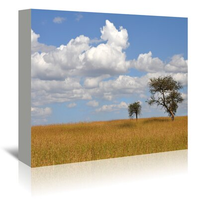 Americanflat 'Kenya Tree' by Golie Miamee Photographic Print Wrapped on Canvas