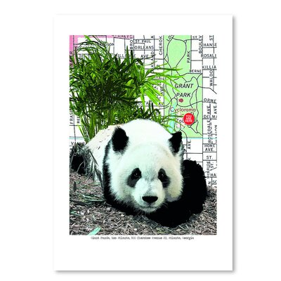 Americanflat Panda' by Lyn Nance Sasser Graphic Art