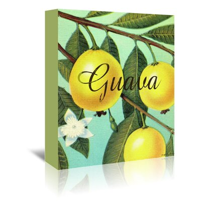 Americanflat 'Guava' by Graffi Tee Studios Graphic Art Wrapped on Canvas