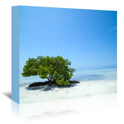 Americanflat 'Florida Lonely Tree' by Melanie Viola Photographic Print Wrapped on Canvas