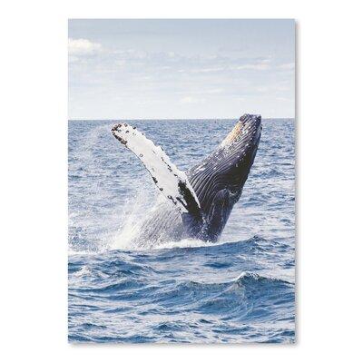 Americanflat Wonderful Dream Sea Life Ocean Whale Underwater Photographic Print