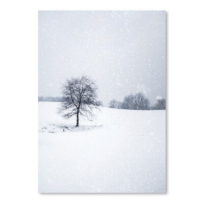 Americanflat Snow Tree Photographic Print on Wrapped Canvas