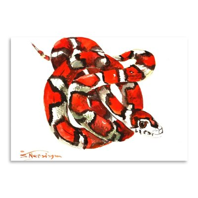 Americanflat Milk Snake' by Suren Nersisyan Graphic Art Wrapped on Canvas