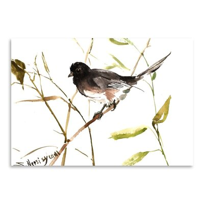 Americanflat 'Eastern Towhee' by Suren Nersisyan Painting Print on Wrapped Canvas