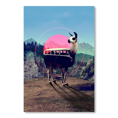 Americanflat 'Lama' by Ali Gulec Graphic Art Wrapped on Canvas
