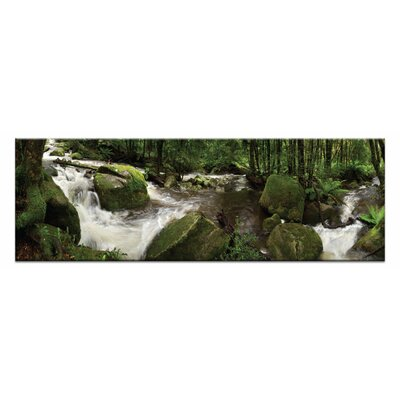 Artist Lane Forest Flow by Andrew Brown Photographic Print Wrapped on Canvas in Green