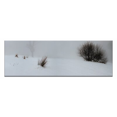 Artist Lane White-out by Andrew Brown Photographic Print Wrapped on Canvas