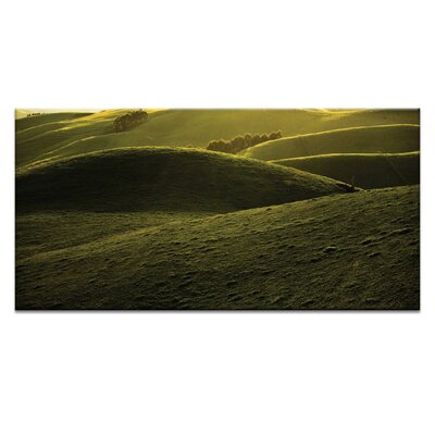 Artist Lane Green Folds by Caroline Gorka Photographic Print Wrapped on Canvas