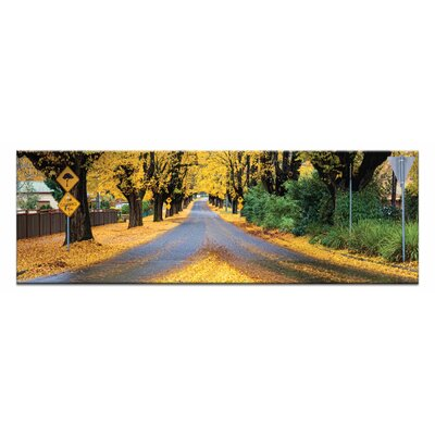 Artist Lane The Avenue by Andrew Brown Photographic Print Wrapped on Canvas