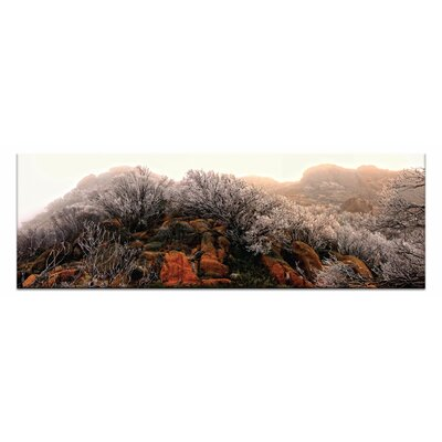 Artist Lane Icy Cathedral by Andrew Brown Photographic Print on Canvas