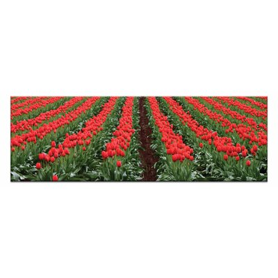 Artist Lane Spring Has Sprung by Andrew Brown Photographic Print Wrapped on Canvas in Red/Green