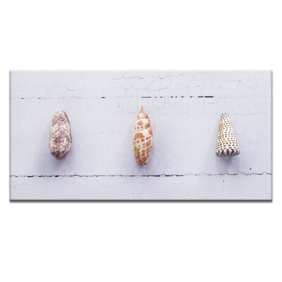 Artist Lane Junonia Trio by Emma Relph Photographic Print Wrapped on Canvas