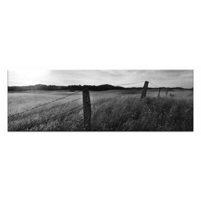 Artist Lane Golden Grass by Andrew Brown Photographic Print on Canvas in Black