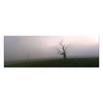 Artist Lane Out of of the Mist by Andrew Brown Photographic Print on Canvas