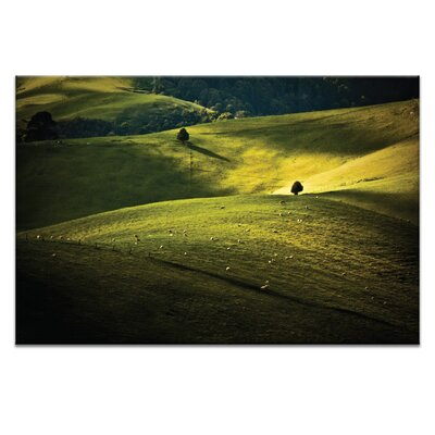 Artist Lane Greens and Golds by Caroline Gorka Photographic Print Wrapped on Canvas