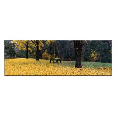 Artist Lane Bright Blanket by Andrew Brown Photographic Print Wrapped on Canvas in Black/Yellow